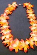 1872 гавайское ожерелье