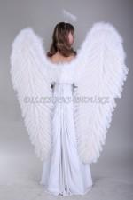 1315. Ангел