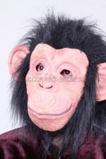 1647. Маска обезьяны