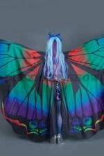 5357. Бабочка Морфо. Вид сзади.